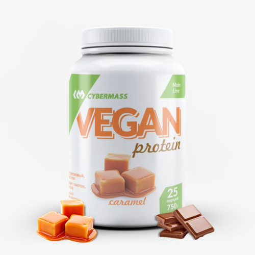 Vegan protein 750 g Cybermass