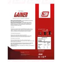 Гейнер Gainer 2SN (1000 г)